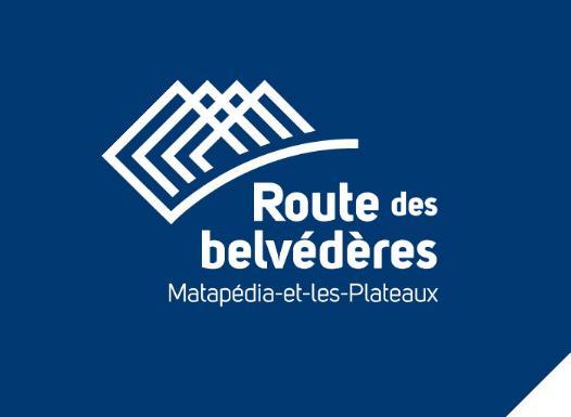 Logo bleu carrefour